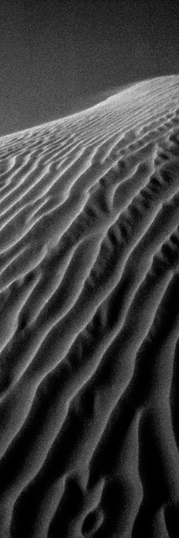 Little Sahara B&W