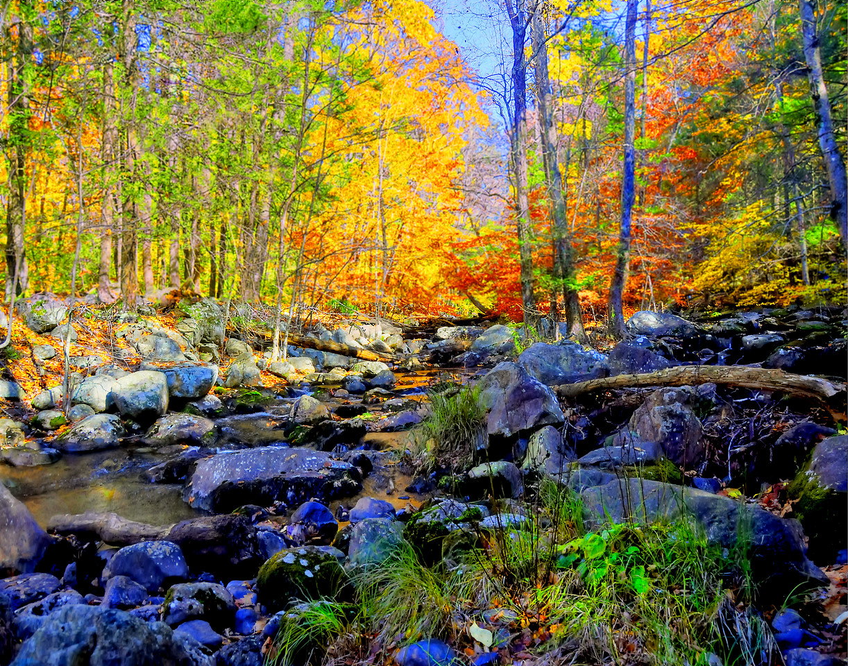 Harriman State Park_Stream_Fall Foliage