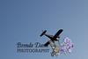 08-23-2011-Spray_Plane-6801