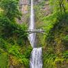 22  G Multnomah Falls Spring V