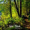14  G Trail Green