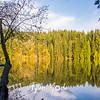3  G BG Lake and Tree