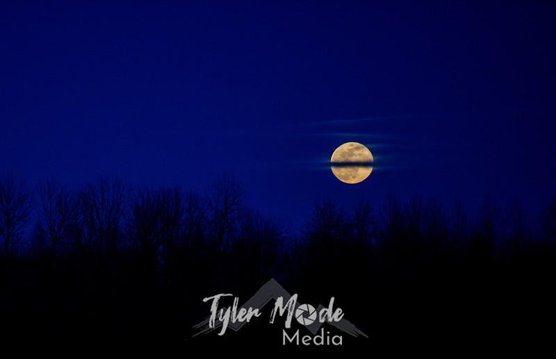 18  G Moonrise Close
