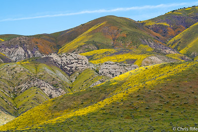 Carrizo Plain National Monument