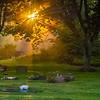 6  G Cemetery Rays