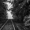 19  G Railroad Tracks Morning Mist BW