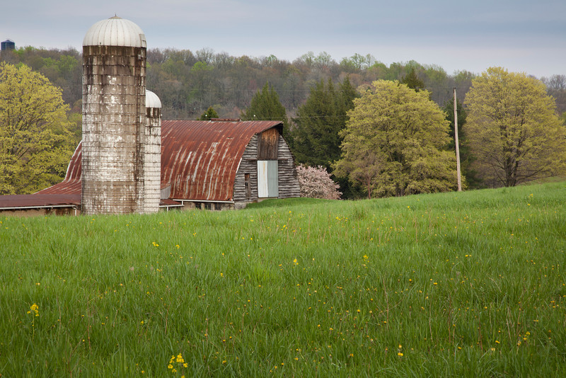 Pennsylvania Farm<br /> (IMG_2861)