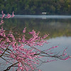 Cheat Lake, WV<br /> (IMG_2671)