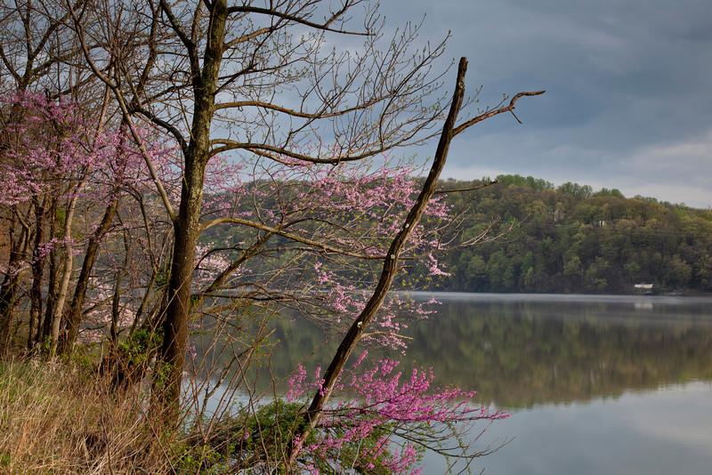 Cheat Lake, WV<br /> (IMG_2674)