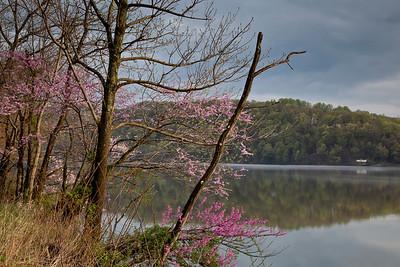 Cheat Lake, WV (IMG_2674)