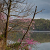 Cheat Lake, WV<br /> (IMG_2674)