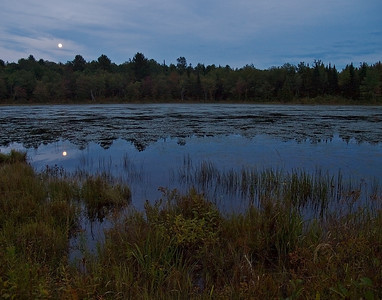 Moonrise on Beaver Pond