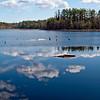 Hayes Marsh - Bear Brook, Allenstown NH