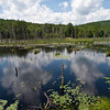 I had lunch here today, overlooking a woodland pond in Pawtuckaway State Park.  It was great.