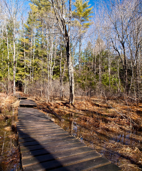 The first walkways over the marsh at Pulpit Rock Conservation Area