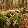 Rock walls like this are ubiquitous in New England, but I've never been able to photograph one well.  This comes close.