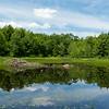 Brennan Pond