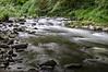 nestucca river rapids-2