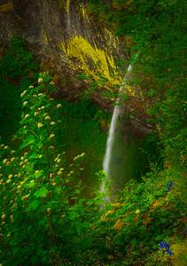 Upper Elowa Falls