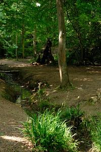 Danbury Common-5289
