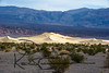 1303_Death Valley_0196