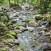 Creek flowing into the Natural Bridge, Springbrook National Park, Queensland, Australia