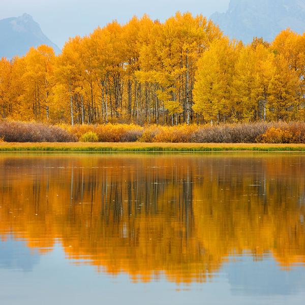 Reflection along the Snake River