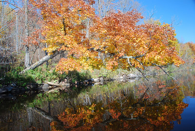 Fall on the Fondulac Flowage in Jay Cooke Park