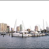 2017-05-16_P51600102southbasin_St Pete,Fl