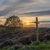 Sunset, Brocton