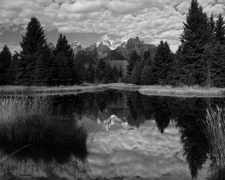 Reflection Along the Tetons