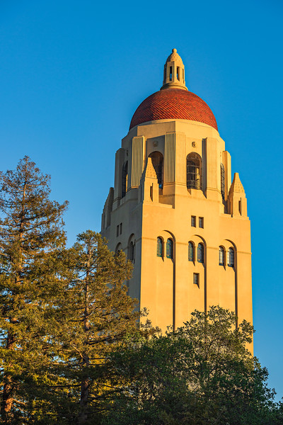 Stanford-University-Stanford-Clock-Tower_Hoover-Tower-Silicon-Valley-California-D817127