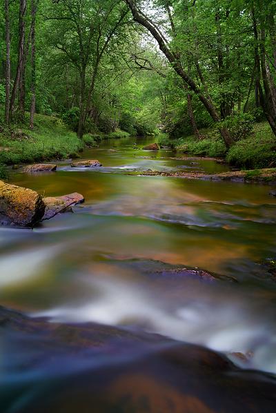Rice Creek, Victoria Bryant State Park, Georgia