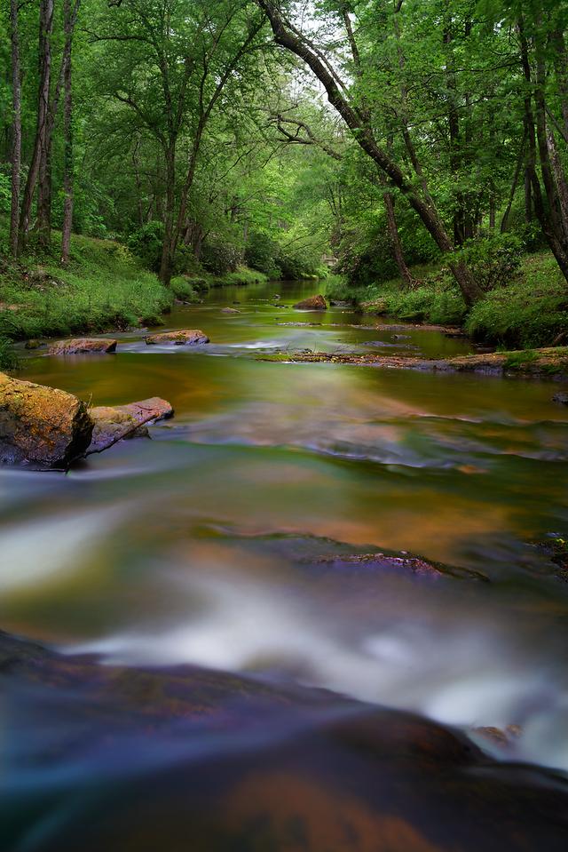 Rice Creek, Victoria Bryant State Park