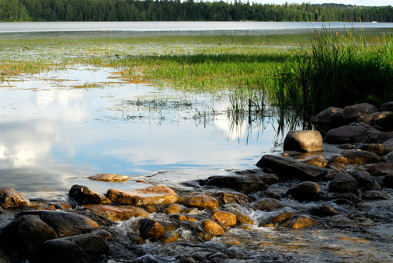 Headwaters of the Mississippi River - Itasca State Park