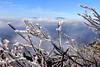 Beech to Roan Mt  2012