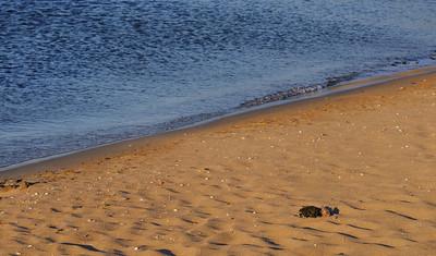 Lindeijer_2012-08-04_194746
