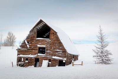 Steamboat Snow Jan 2017