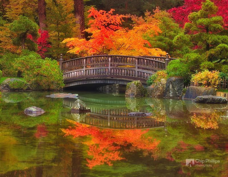 Spokane Japanese Garden#1