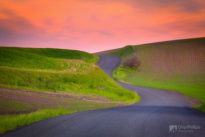 Road to Sunset Palouse