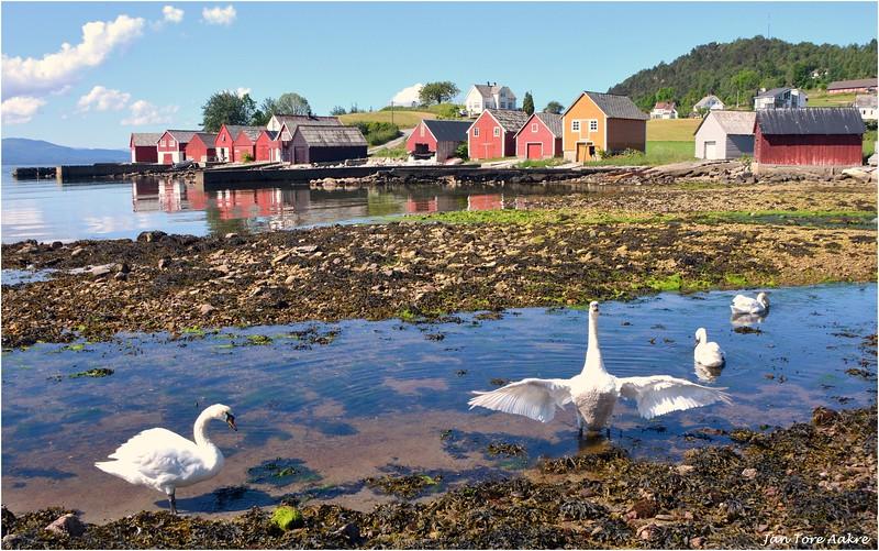 Sommer i Strandvik