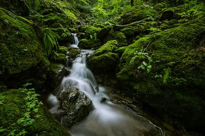 Living Water of Mt Mitake
