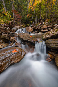 Dixville Autumn Brook