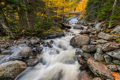 The Flow Of Autumn