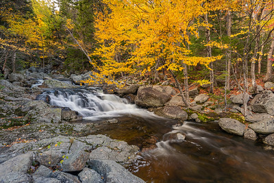 Cascading Falls During Autumn In The White Mountains