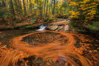 Basin Autumn Swirls