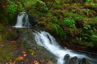 Gentle Cascade