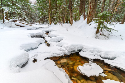 A Frozen Creek In The White Mountains