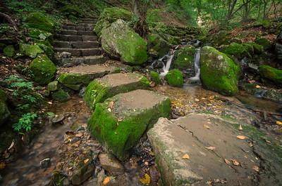 Step Stone Woods
