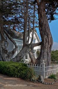 School Street Residence - Mendocino, California